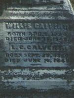 Willis Calvert