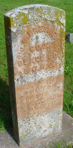William Carroll Green Breshears