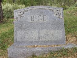 John W. Bice