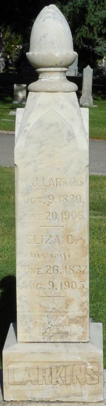 Eliza C <i>Taylor</i> Larkin