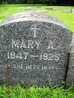 Mary M Saxer