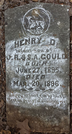 Henry D Gould