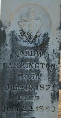 Andrew A Carrington