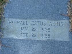 Michael Estus Akins