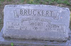Andrew L Bruckert