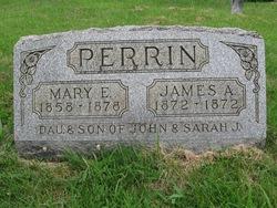 Mary Frances Perrin