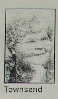 Margie R. <i>Watson</i> Townsend