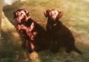 Lizzie Bear <i>and</i> Brookie