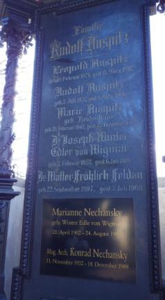 Marie <i>Heidenhain</i> Auspitz