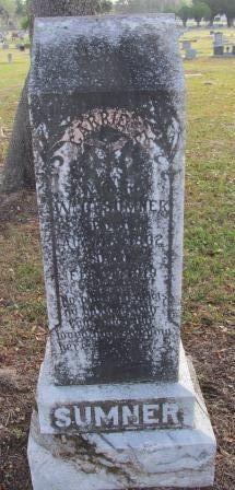 Carrie E Sumner