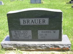Daniel M Brauer