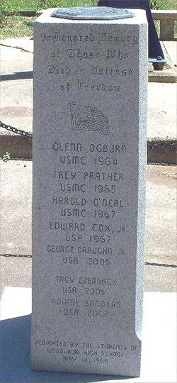 Sgt George Ray Draughn, Jr