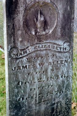Mary Elizabeth Bettie <i>Roach</i> Allen