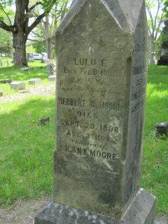 Lulu F Moore
