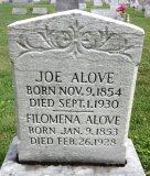 Joe Alove