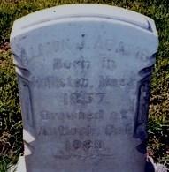 Allison J. Adams