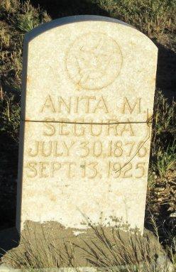 Anita M Segura