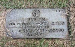 Evelyn Burgos