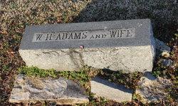 Rosa <i>Spessard</i> Adams