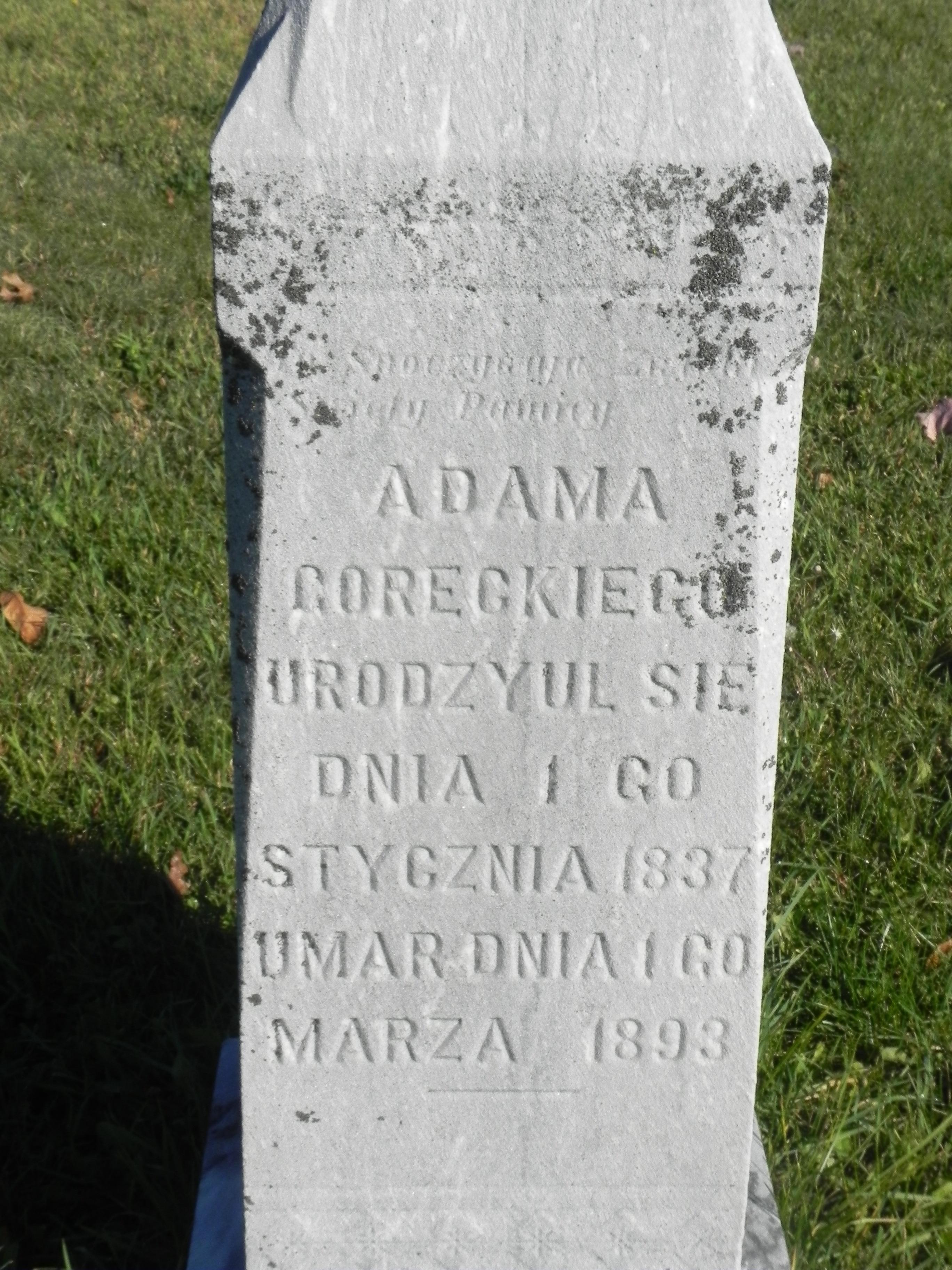 Adam Goretski