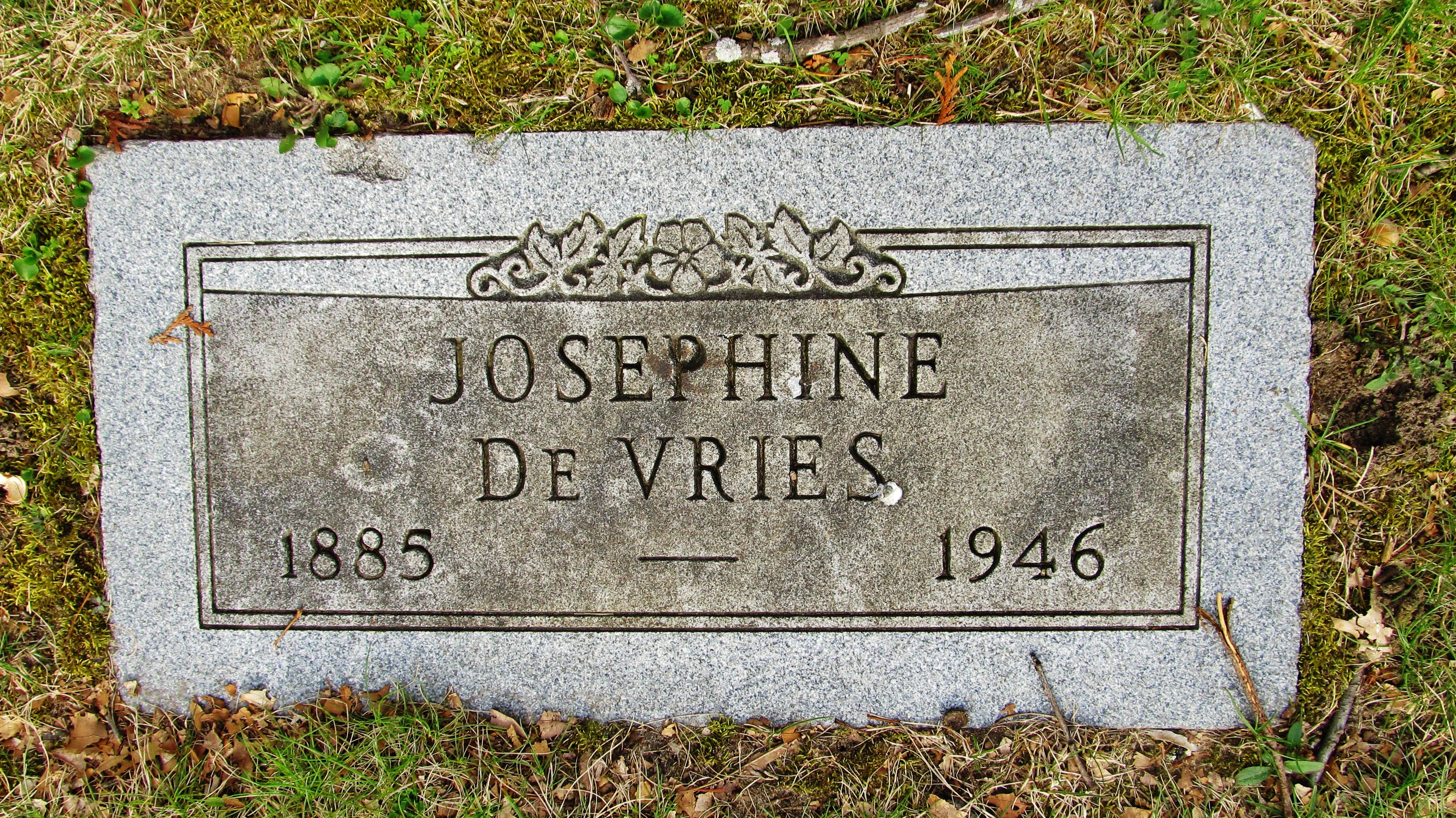 Johanna Josephine <i>Bush</i> DeVries