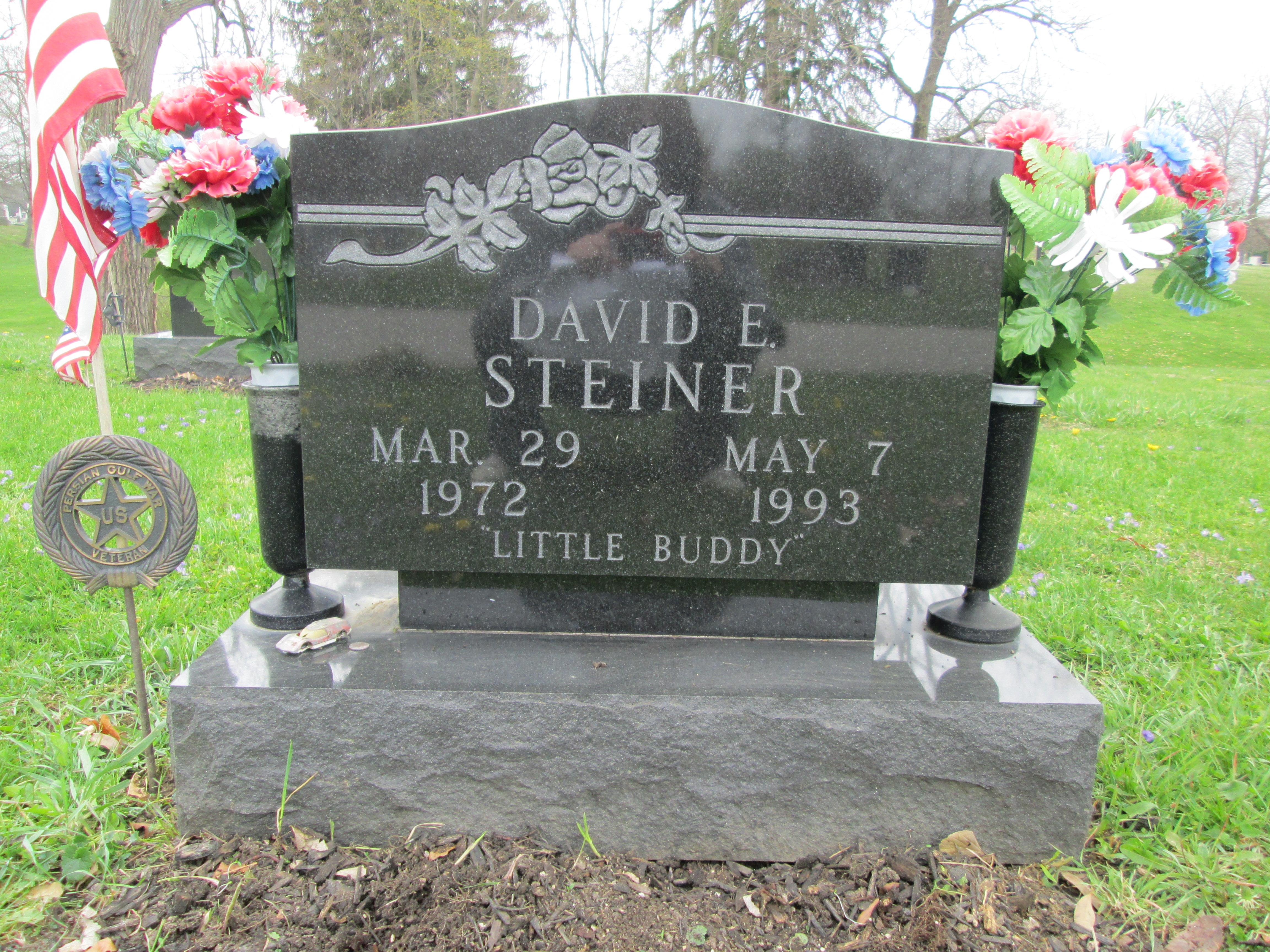 David E Steiner