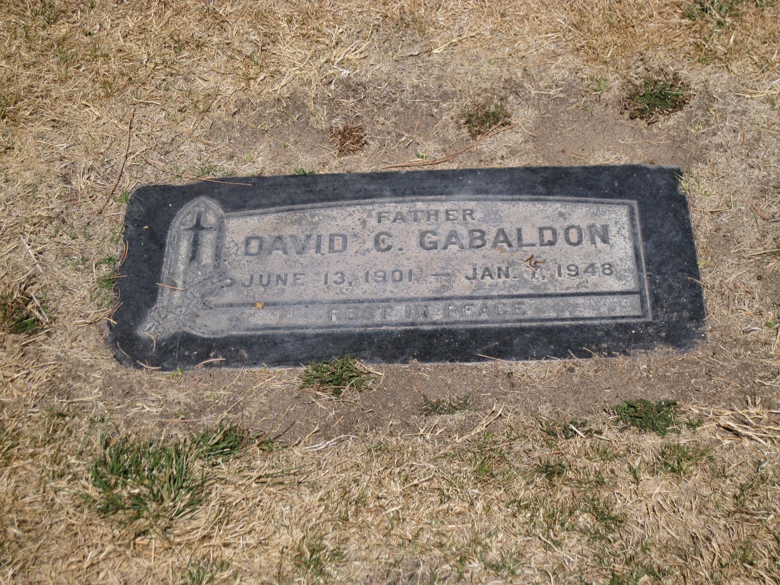 David C Gabaldon