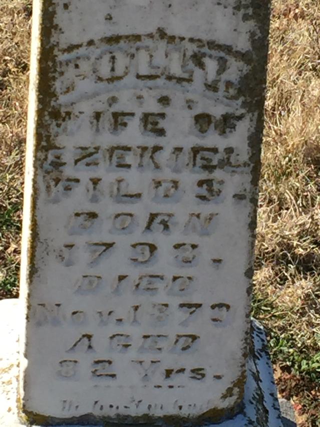 Mary Ann Polly <i>Sexton</i> Fields