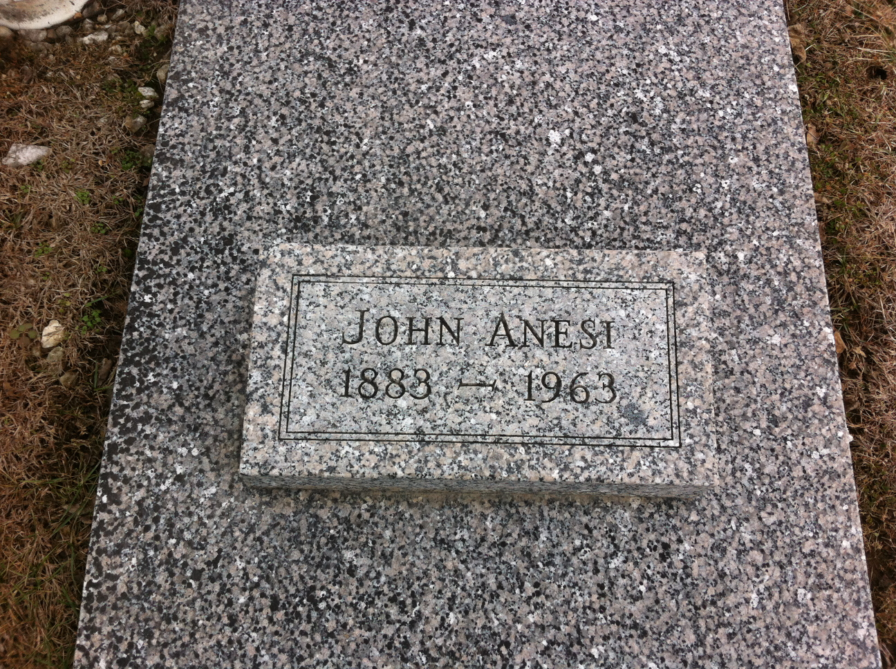 John Anesi