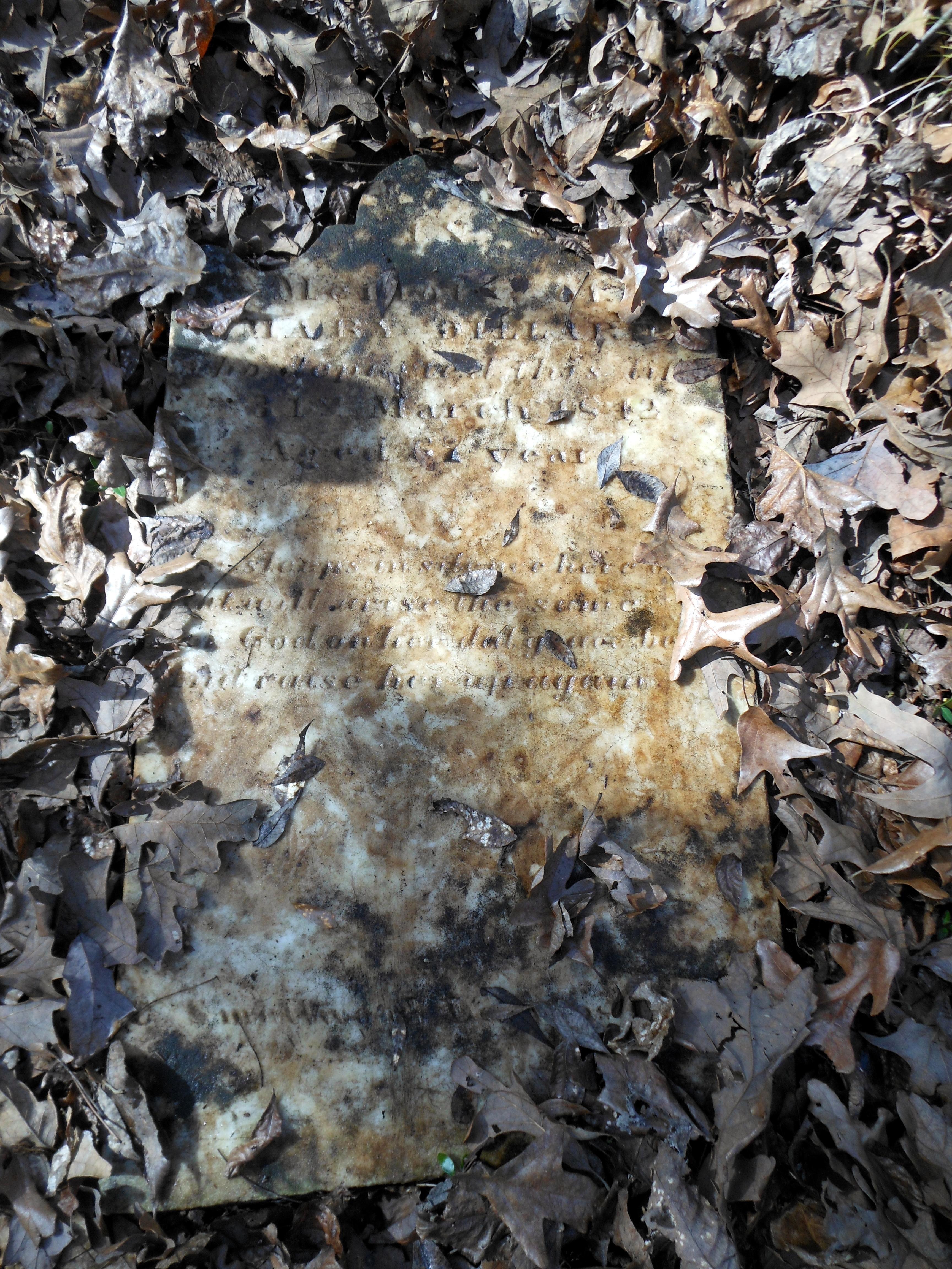 Mary E. <i>Puckett</i> Dillard