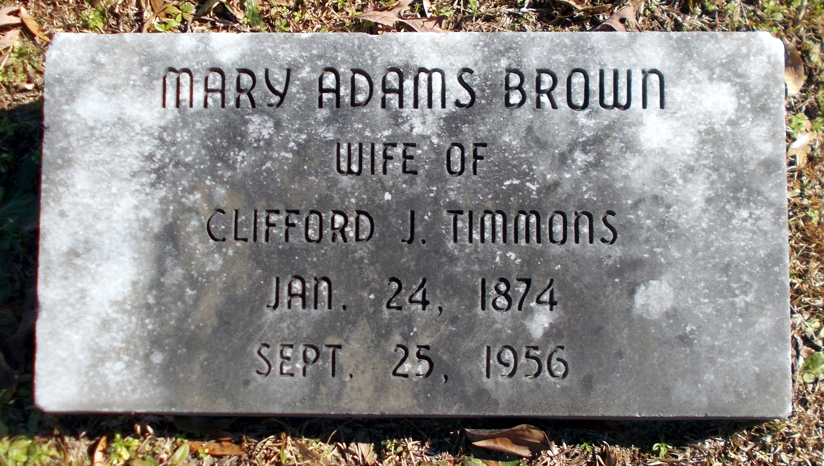 Mary <i>Adams</i> Timmons