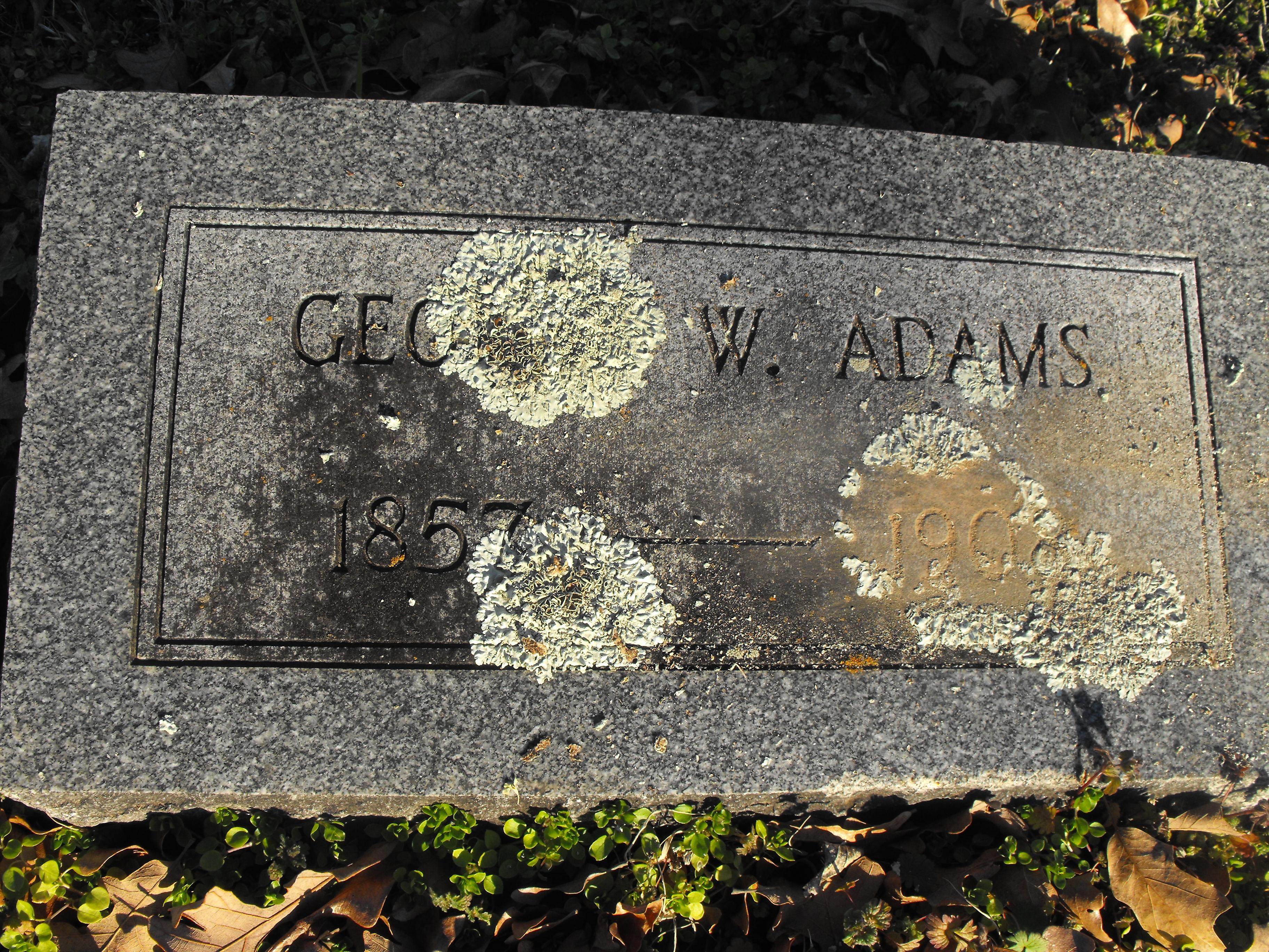 George W. Adams