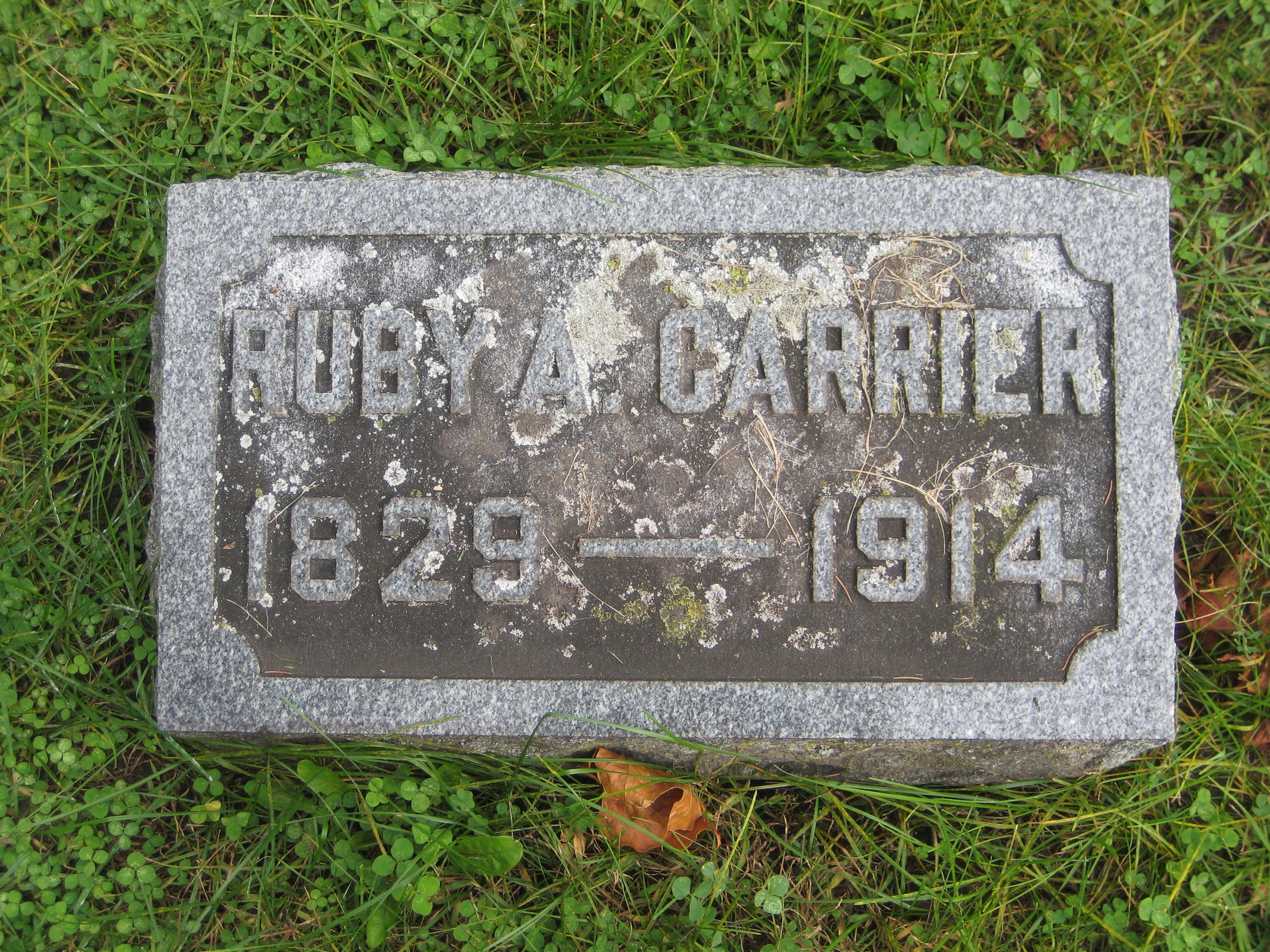 Ruth Ann Ruby <i>Knapp</i> Carrier