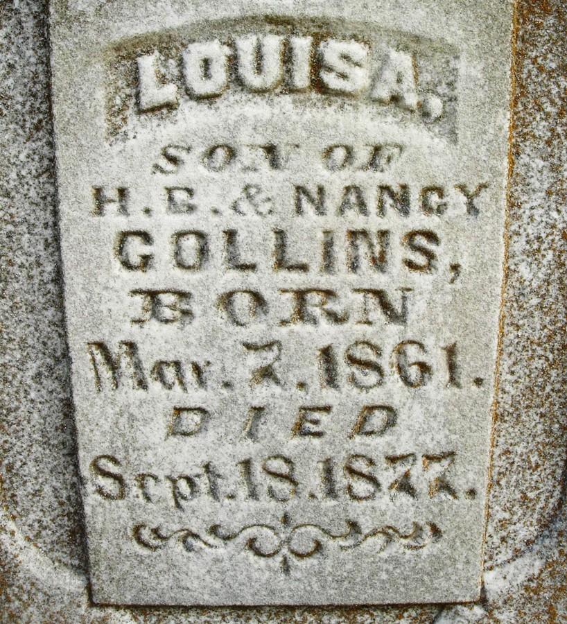Louisa Collins