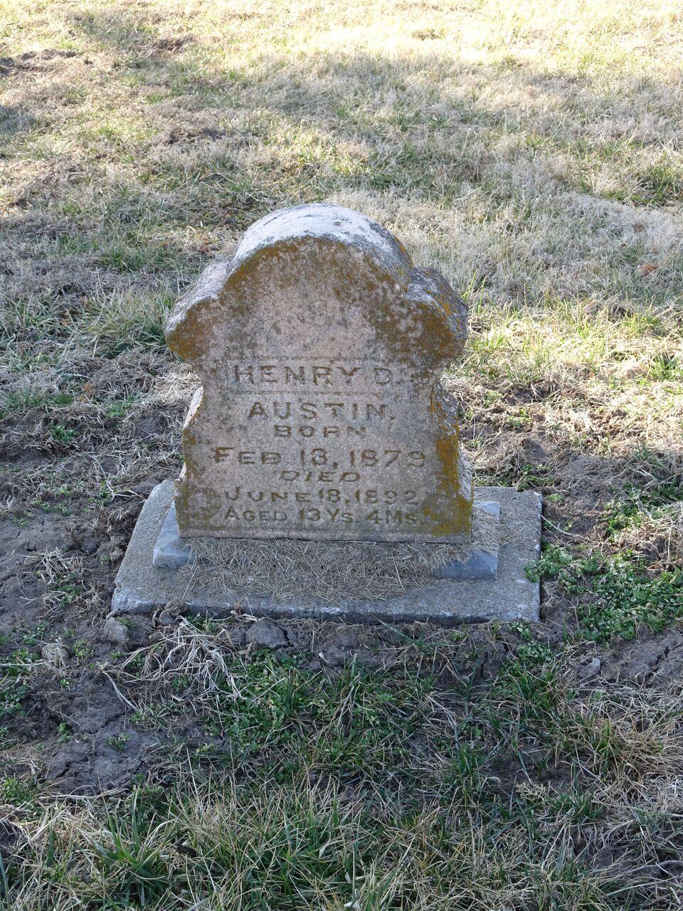 Henry D Austin