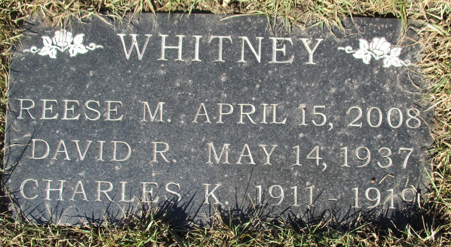 David R Whitney