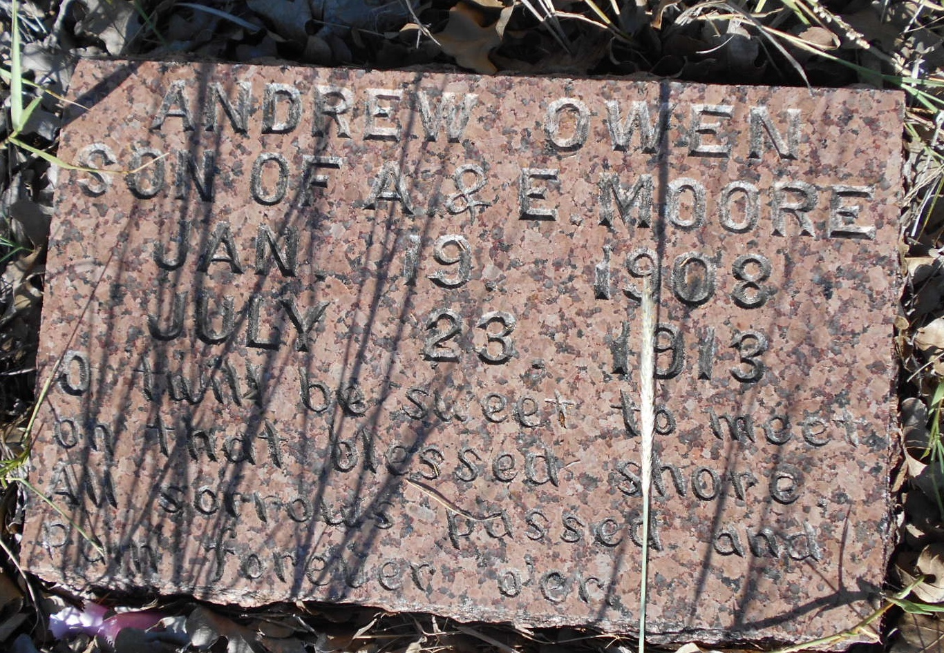 Andrew Owen Moore