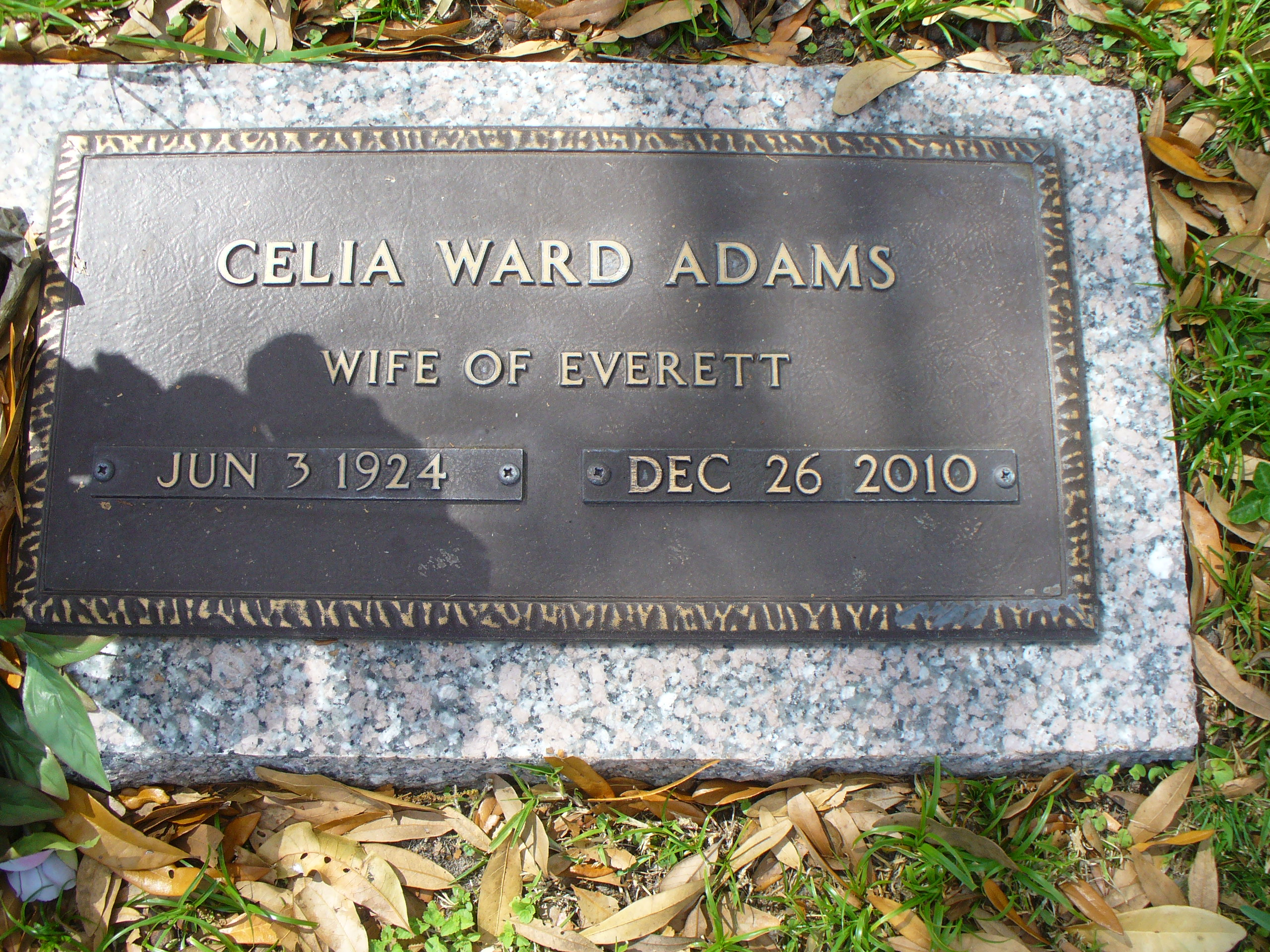 Celia Virginia <i>Ward</i> Adams