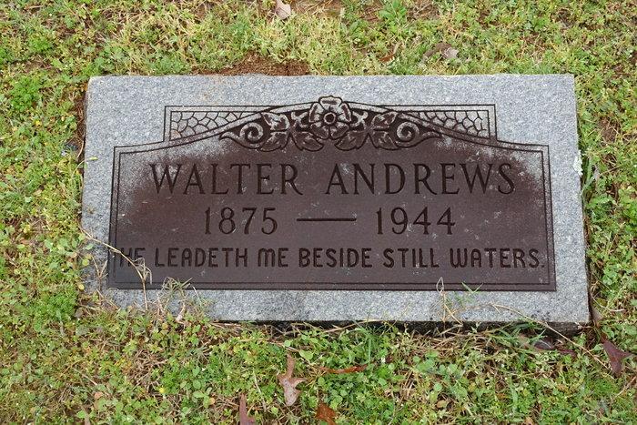 Walter Van Hillary Andrews