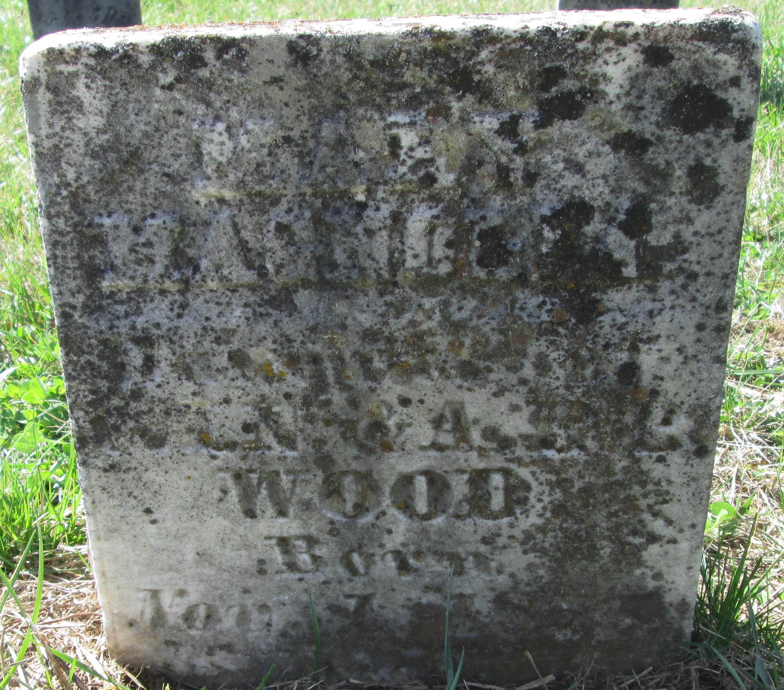 Mary Magnolia Wood