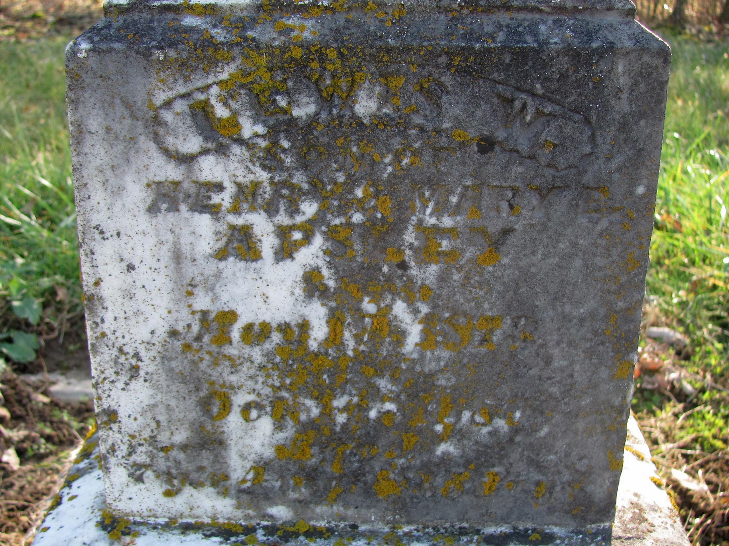 Lewis W Apsley