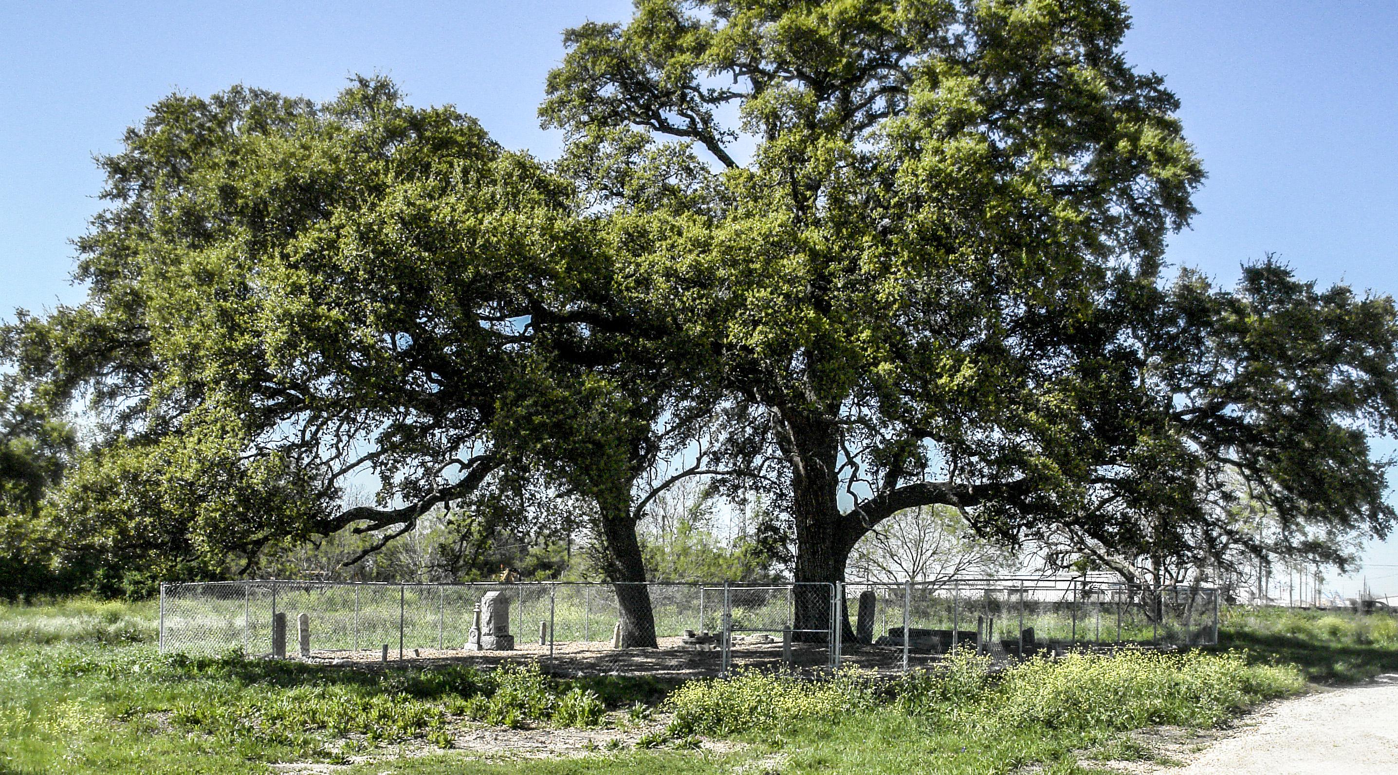 Allen-McNutt Cemetery