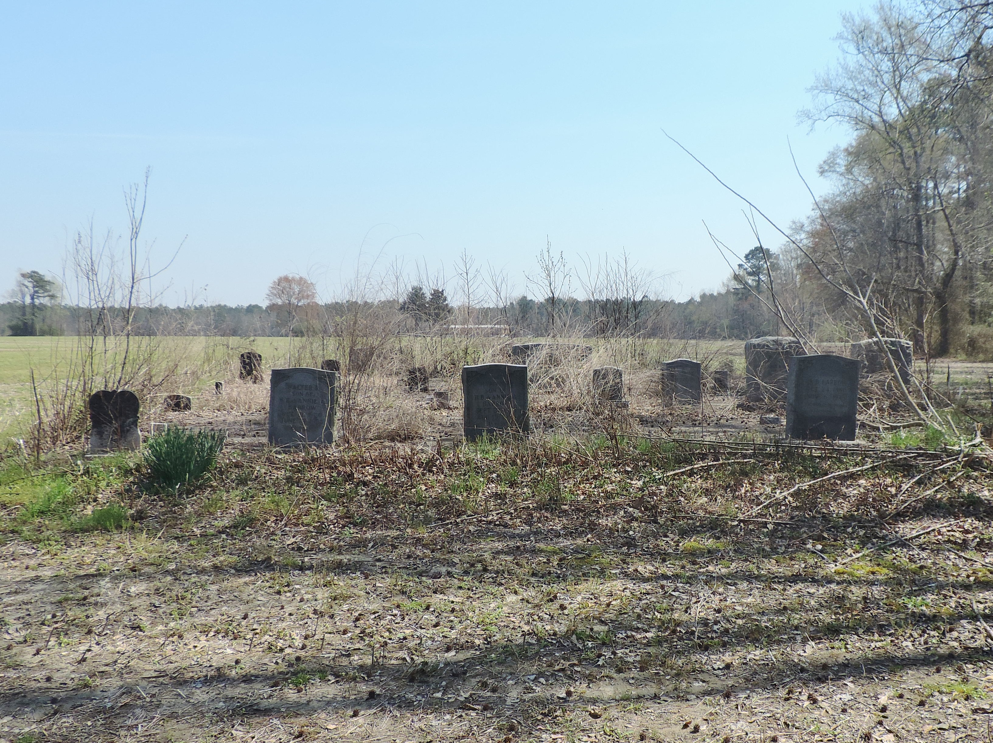 Barrow Family Cemetery