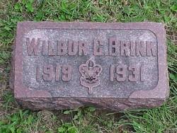 Wilbur Brink