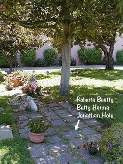 Jonathan Hole
