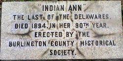 Indian Ann