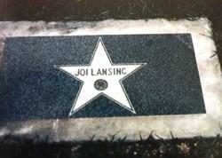 Joi Lansing