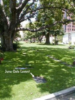 June Gale