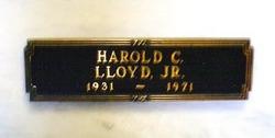 Harold Lloyd, Jr