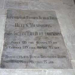Pyotr Petrovich Romanov